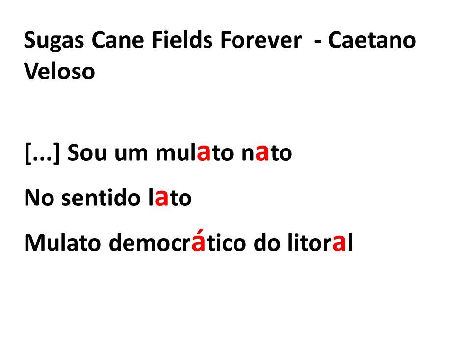 Sugas Cane Fields Forever - Caetano Veloso [